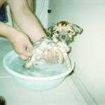 2003年入浴時